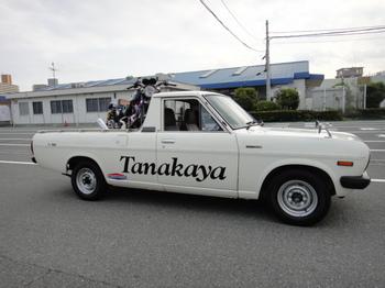 サニトラ・横.JPG